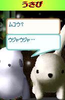 070128pankichichan13.jpg