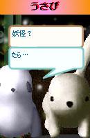 070128pankichichan14.jpg