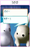070128pankichichan22.jpg