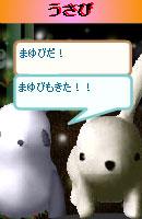 070128pankichichan3.jpg