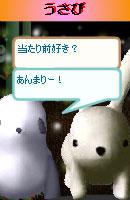 070128pankichichan6.jpg