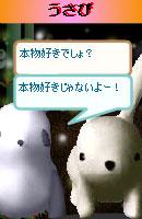 070128pankichichan7.jpg
