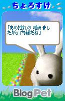 070131sanzenri9.jpg