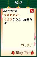 070131usabinikki1.jpg
