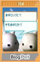 070210kimomayu12.jpg