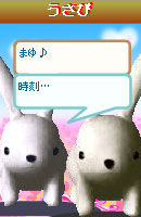 070218okyakusama19.jpg