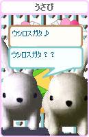 070218okyakusama23.jpg