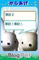 070218usabikaraagechan1.jpg