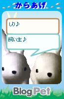 070218usabikaraagechan2.jpg
