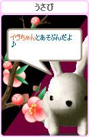 070218usabiyokoku1.jpg