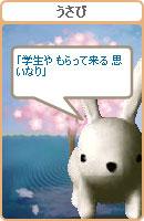 070313haiku4.jpg