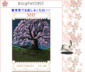 070402usabiblog1.jpg