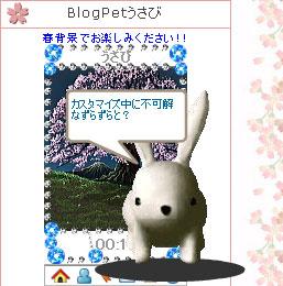 070402usabiblog6.jpg