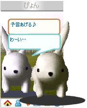 070403usanapyonchan4.jpg