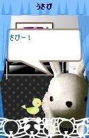 070501usabi1.jpg