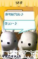 070501usamochan9.jpg