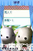 070507pyonchan13.jpg