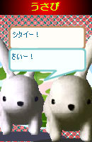 070507pyonchan14.jpg