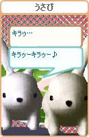 070507pyonchan2.jpg
