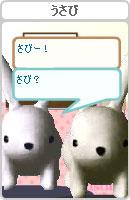 070507pyonchan23.jpg