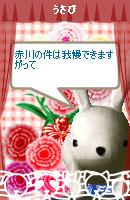 070516blogpet3.jpg