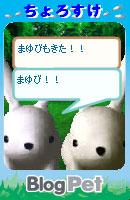 070528chorosukechan18.jpg