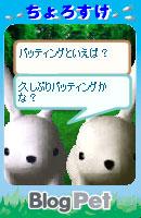 070528chorosukechan19.jpg