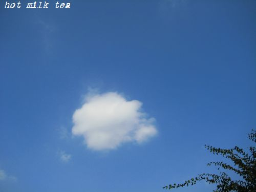 IMG_7290fc.jpg