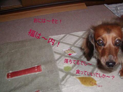 013_20120203224249.jpg