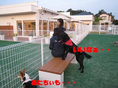 20070502011037.jpg