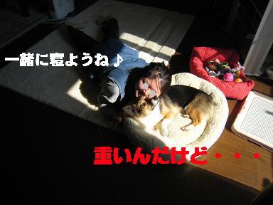 20071108131346.jpg
