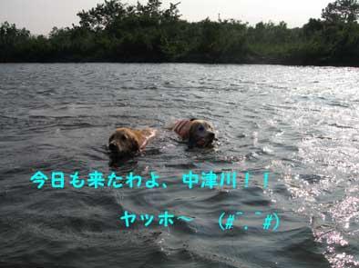 20070807171048.jpg