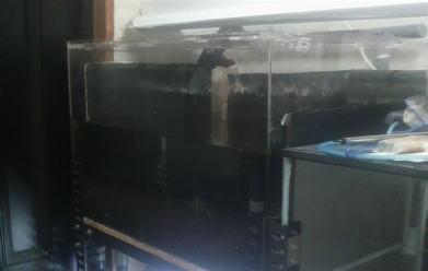水槽崩壊2.jpg