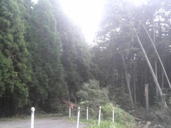 2011.10.2 3.jpg