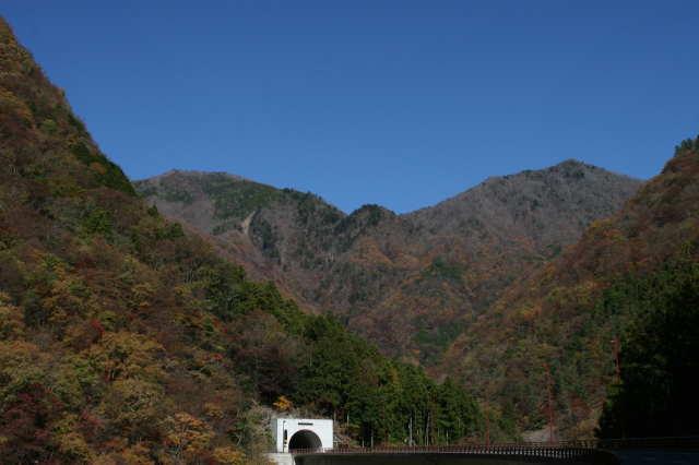 2011.11.22 2.jpg