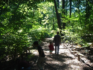 1-nybg-trail.jpg