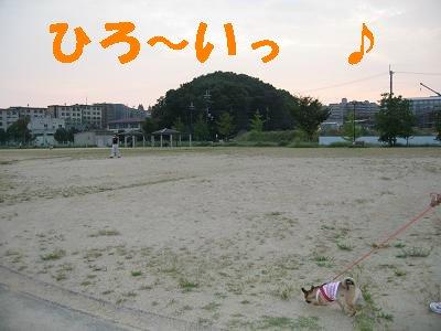 IMG_1447.jpg