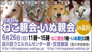nekoinuoyakai20110626_320x180.jpg