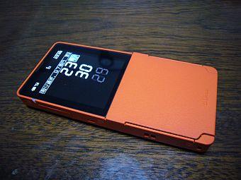 P1020295-1.jpg