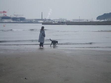海の公園 ノエねえちゃんと