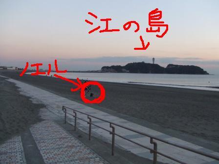 2007_11240352.jpg