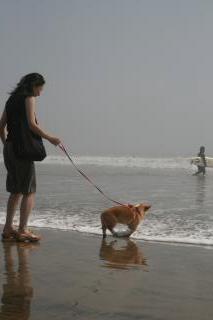 波にファーストタッチ!