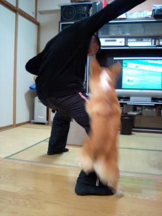 うぉぉぉ~っヽ(^o^)丿先制だぁみらん!