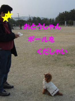 2007_0211mirutaru0305.jpg