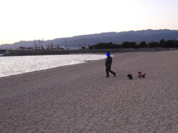 2007_0216mirutaru0067.jpg