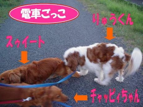 20070827-1jpg.jpg