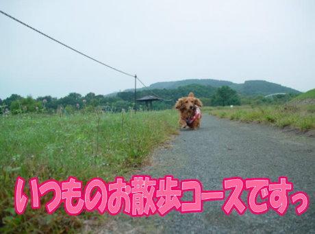 200709116-2.jpg