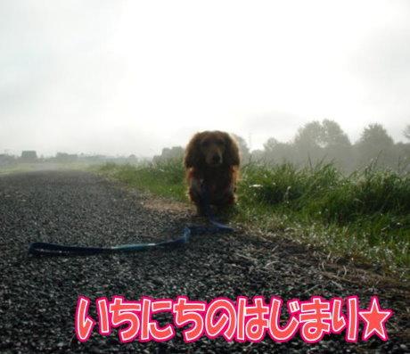 20070920-1.jpg