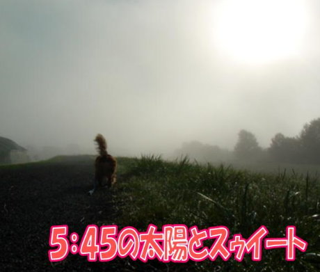 20070920-2.jpg