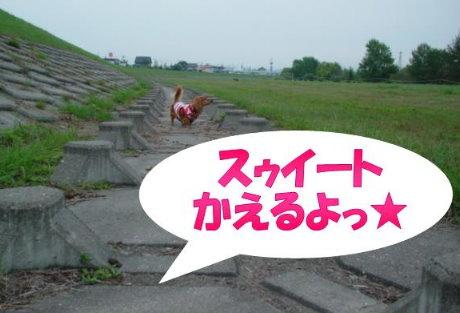 20070925-1.jpg